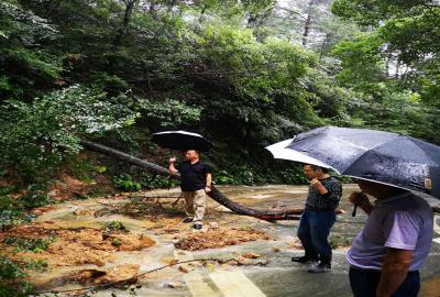 茶陵云阳国家森林公园管理局局长肖晓勇到云阳山景区实地查看景区受灾情况